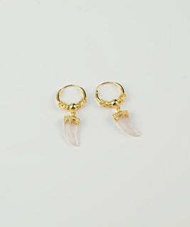 Horn Earrings - Crystal